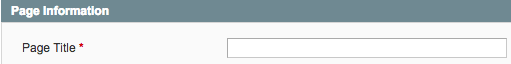 A screenshot of Magento's Page Title field