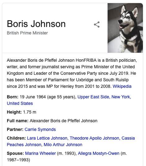Boris Johnson Knowledge Graph Photo Replaced with Picture of a Dog Using Paw-ry Party Plugin
